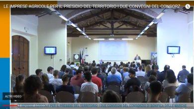 """Servizio di Envision Tv sul convegno: """"Le imprese agricole per il presidio del territorio"""""""