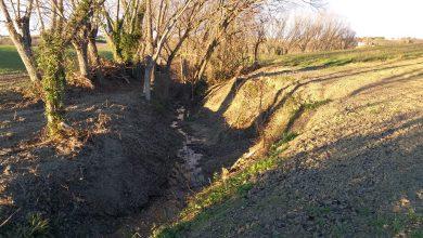 Ripuliti e sistemati il fosso del Bevano (Mombaroccio) e il fosso Re dei gatti (Vallefoglia)