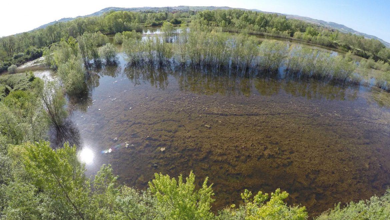 Giornata mondiale delle zone umide. Anche il fiume Foglia ne ha diverse che il Consorzio intende tutelare e valorizzare