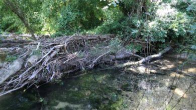 Pioraco, interventi da 400mila euro sul fiume Potenza e sul torrente Scarzito