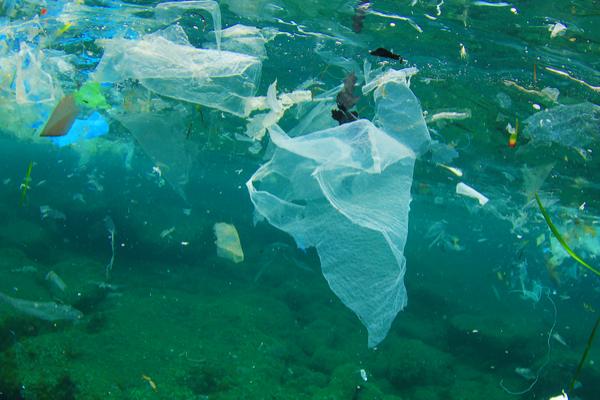 Lotte alle microplastiche che avvelenano il mare. Il Consorzio è capofila di un progetto Life che studia soluzioni innovative.