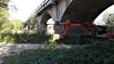 Iniziati i lavori di pulizia dell'alveo sotto il ponte del Metauro tra Calcinelli e Villanova. Il sindaco Aguzzi ringrazia il Consorzio di Bonifica