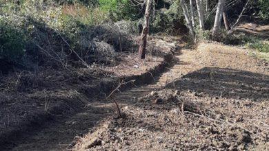 Il Consorzio in prima linea contro il dissesto idrogeologico a Sassofeltrio. Sistemata una frana a C. Salcetti e ripristinato il deflusso in alcuni fossi