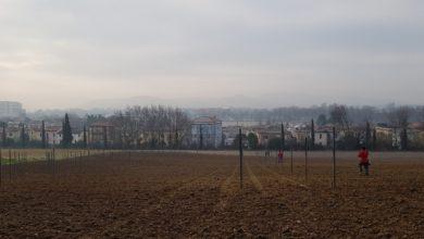 Sistemata Fossa San Carlo, tra la Siligata e Colombarone (Pesaro). Tagliata la vegetazione in eccesso e rimossa occlusione che allagava i campi