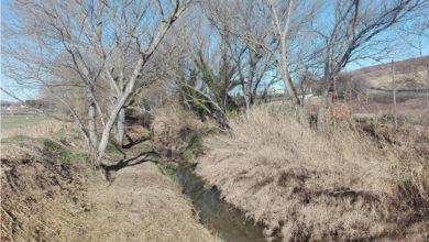 Ripuliti gli argini del fiume Aspio. Prosegue l'attività di manutenzione dei canali del Consorzio.