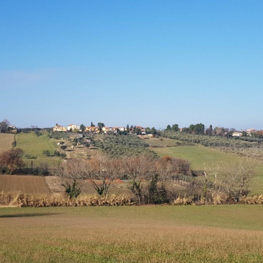 Ripulita e messa in sicurezza Fossa S Stefano, tra Gradara e Tavullia. Importante intervento del Consorzio lungo oltre 1500 metri di corso d'acqua