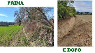 Terminati i lavori al fosso Musone n. 1773, in località Carpineto, a Filottrano (AN). Ripristinato l'argine eroso e ripulito l'alveo.