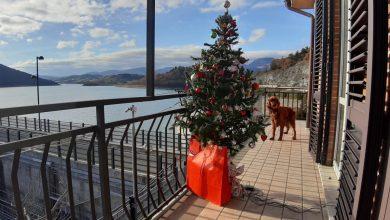 Il Consorzio di Bonifica augura a tutti Buon Natale e felice anno nuovo!