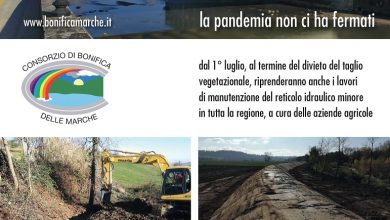 Al via 336 cantieri per la manutenzione del reticolo idrografico minore. Il Consorzio incarica le aziende agricole, sentinelle del territorio.