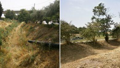 Doppio intervento nella provincia picena: pulizia dei fossi a Cupra e Montalto
